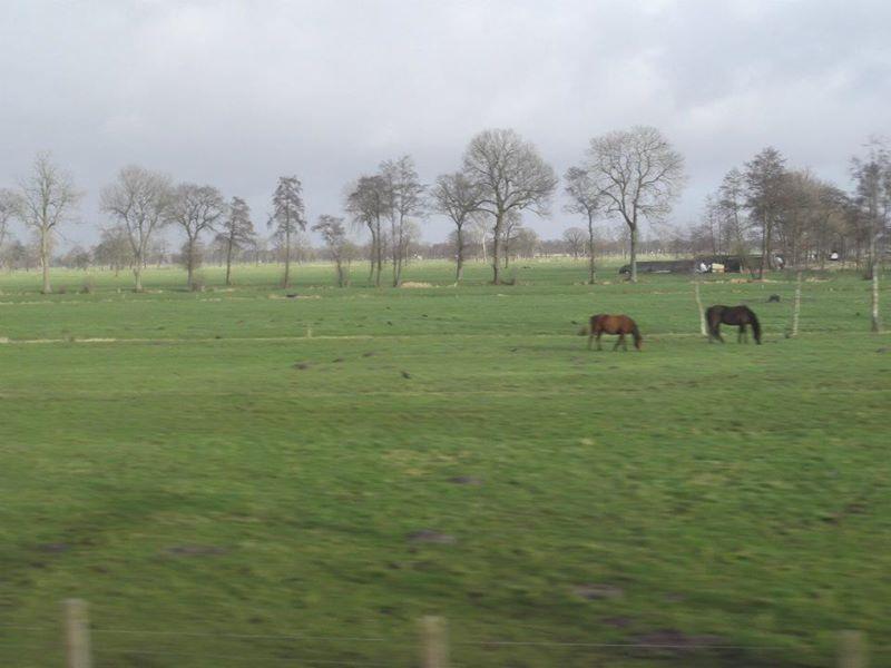 Train to Leeuwarden